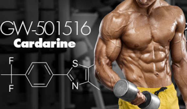 Cardarine Review: Does GW501516 Truly Works?